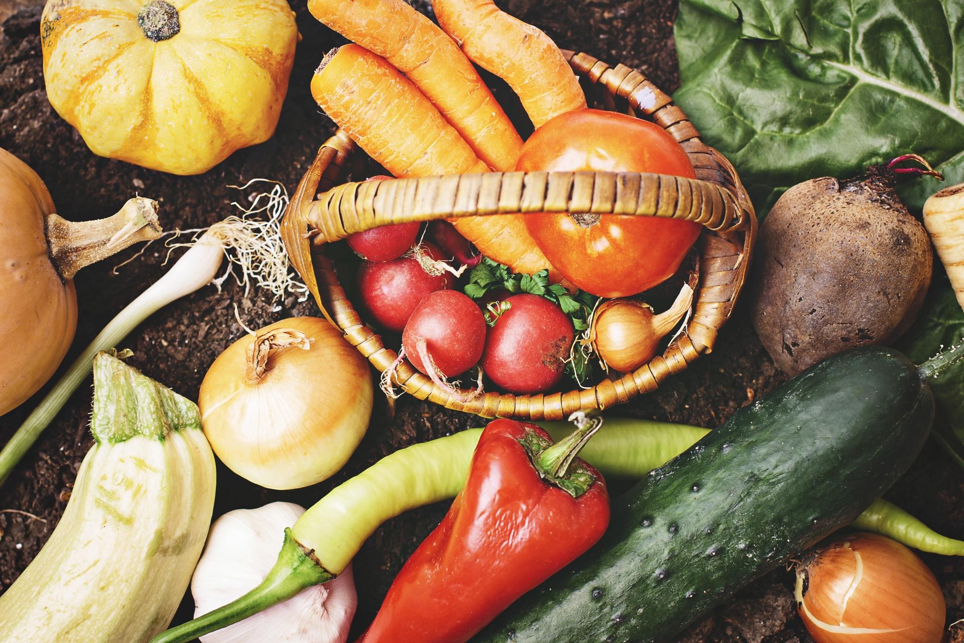 健康は食べ物8割・運動2割